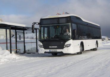 bilete autocar Dorohoi - Anglia